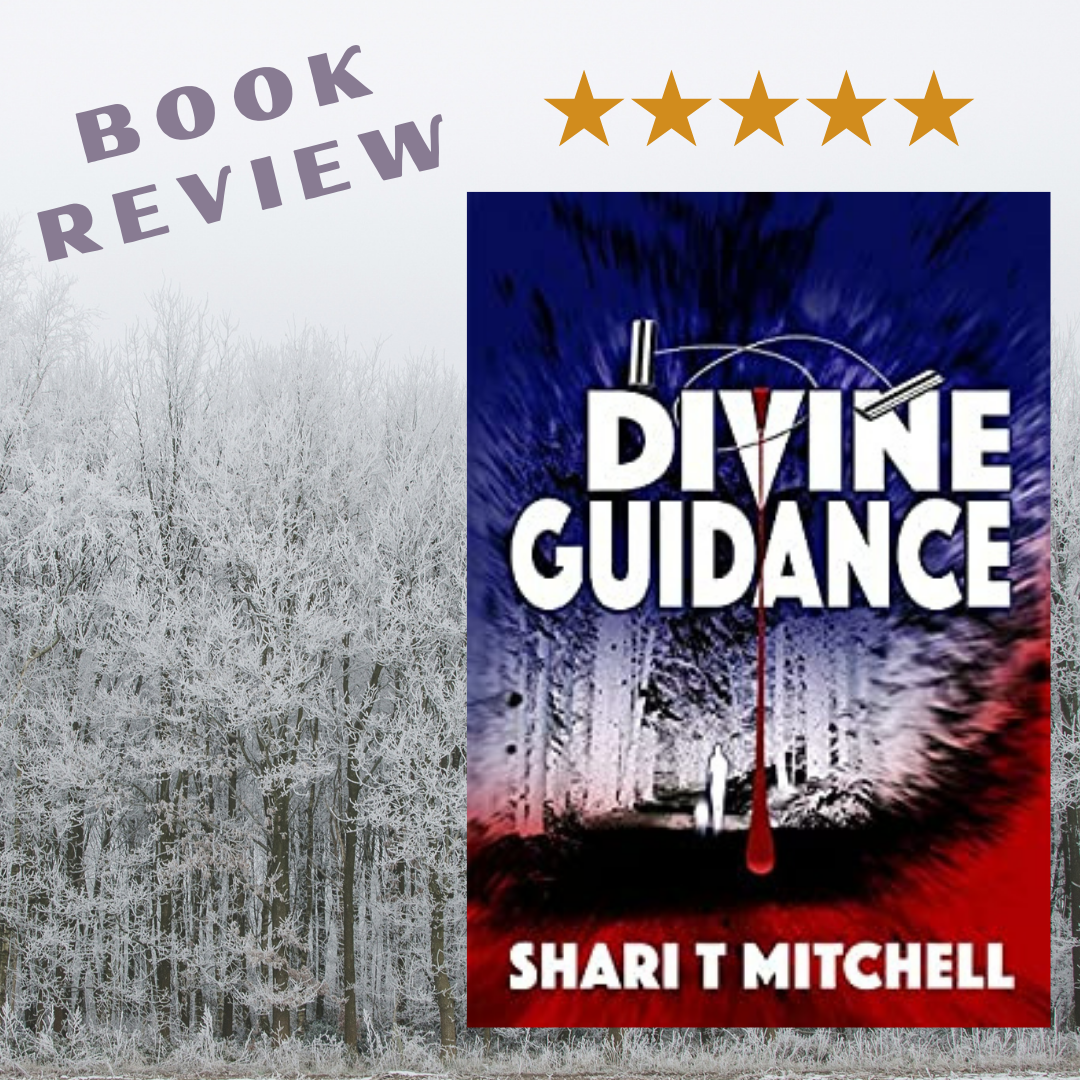 Book Review of Divine Guidance
