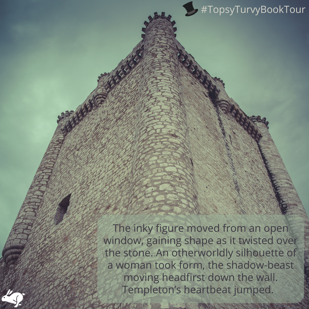 Topsy Turvy Book Tour Dracula