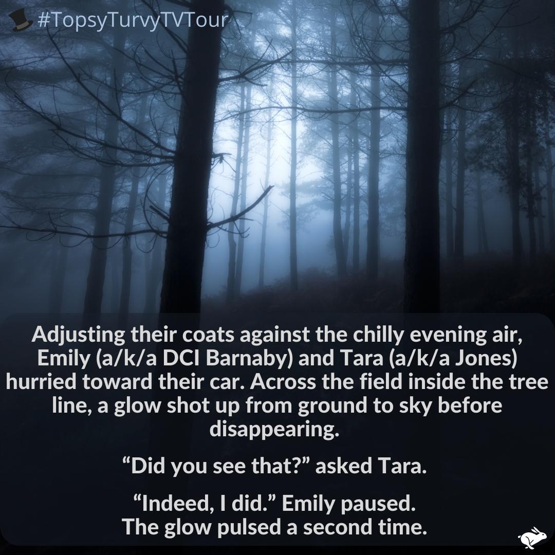 Topsy Turvy TV Tour